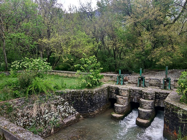 2. Dachigam National Park