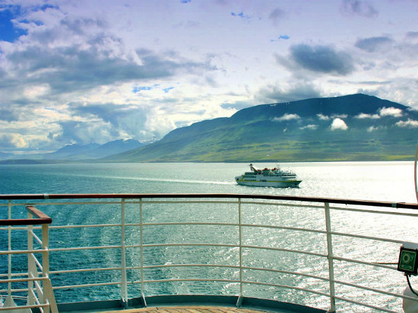 7. Cruise tour is synonymous with safari on water