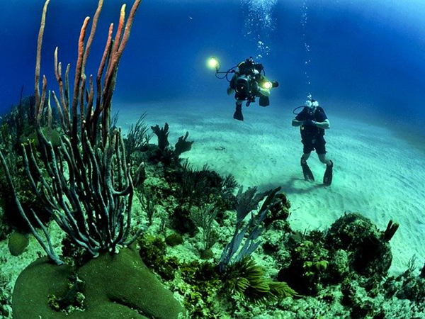2. Andaman – Scuba Diving And Snorkelling
