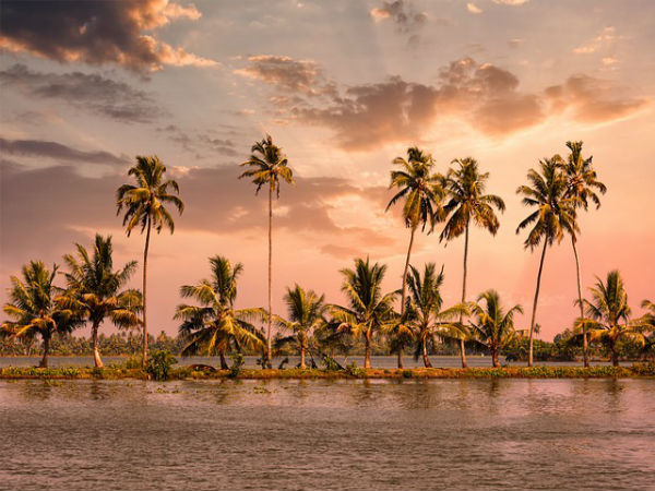 3. Alleppey