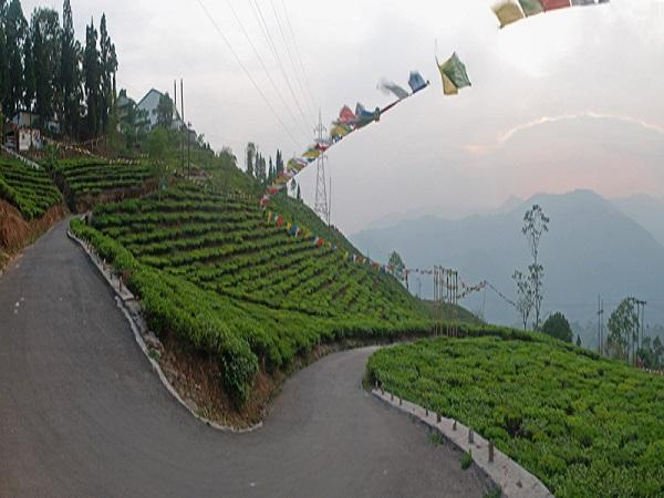 Kurseong, North Bengal