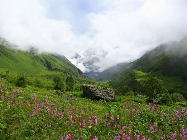 9. Valley Of Flowers