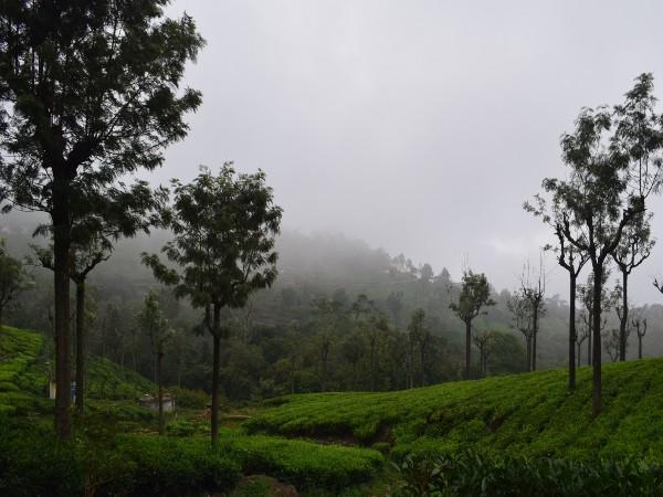Tamil Nadu's Ten Best Winter Destinations