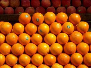 The Orange City Nagpur Maharashtra
