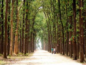 The Holy Town of Gorakhpur