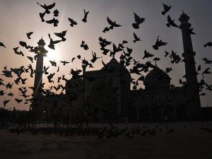 Vistas of Jama Masjid
