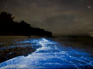 Unusual Beaches In India