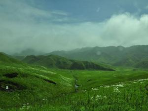 Dzukou Valley In Nagaland