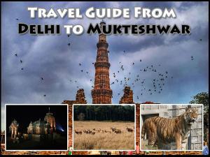 Trip From Delhi Mukteshwar