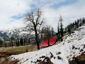 Deo Tibb Trek In The Himalayas