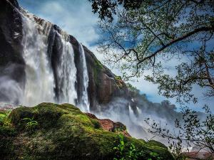 Weekend Trip From Bengaluru To Athirapally By Road