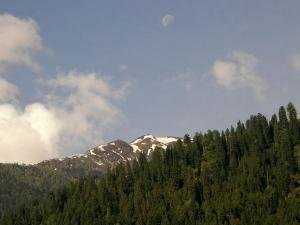 A Wonderful Trek In The Lap Of Nature Kullu Valley