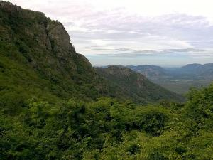 An Awesome Trek In The Holy Hills Of Tirumala