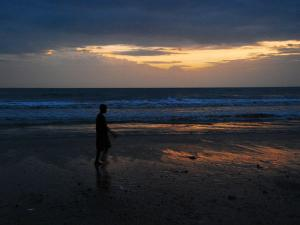 The Beach Town Of Bordi In Maharashtra