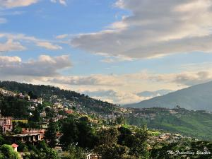 Almora To Mussoorie An Enchanting Journey In The Hills