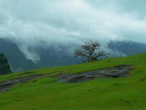 Mumbai To Junnar Traverse The Less Explored Places Of Maharashtra