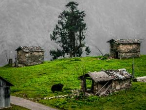 Know About Some Of The Least Populated Villages In India