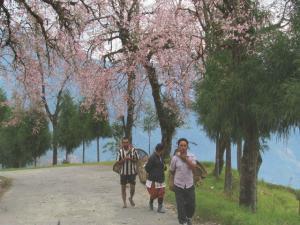 The Tourist Town Of Ravangla In Sikkim