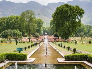 Visit These 6 Beautiful Botanical Gardens Of India