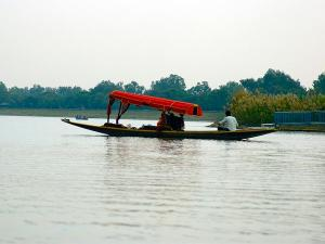 Best Things To Do When In Chandigarh