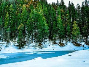 Kedarkantha An Alluring Winter Trek