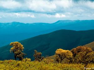 Ideal Road Trips To Take From Mysore