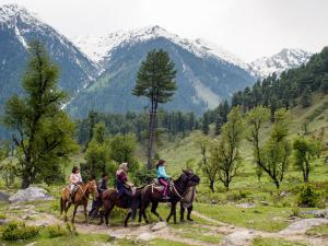 Best Destinations To Go Horse Riding In India