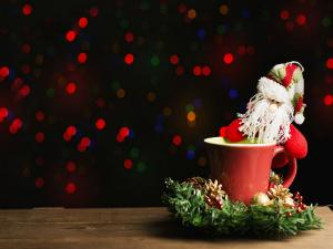 Best Places In India To Celebrate Christmas