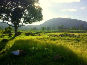 Chennai To Vellore An Exceptional Journey With Unforgettable Spots