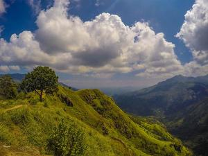 Contemplate These Beautiful Places In Assam