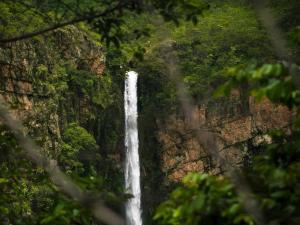 Thalaiyar Falls The Beauty Tucked Away In Palani Hills