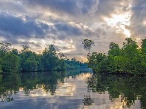 Kolkata To Henrys Island Amid Pristine Beaches And Rich Wildlife