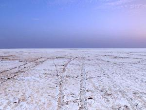 Ahmedabad To Kutch Exploring India S Exotic Wilderness
