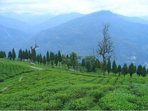 Beautiful Yet Unexplored Hill Stations In Sikkim