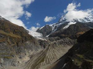 The Pindari Glacier Trek A Trail Laid Through Himalaya S Rhododendron Carpet