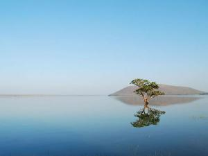 Ever Heard Of Pakhal Lake In Telangana Which Resembles A Heavenly Site