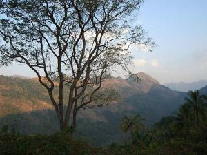 Why The Charming Poonjar In Kerala Demands Exploration