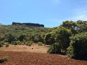 Kamalgad Fort In Maharashtra Of Trekking Trails And Caves