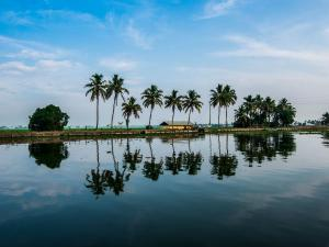 Interesting Facts About Kochi Kerala