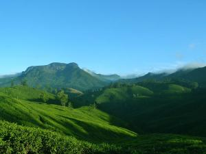 Places To Visit In Kannan Devan Hills Things To Do And How To Reach