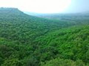 Satna Madhya Pradesh Attractions How To Reach