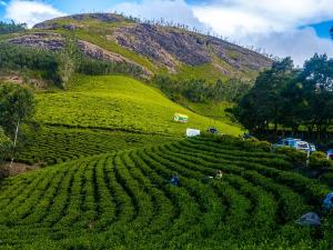 Places To Visit In South India In March