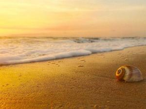 Best Places To Visit In Goa In April
