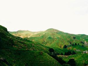 Places To Visit In Nagaland In May
