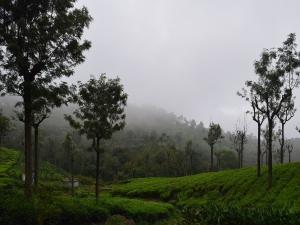 Tamil Nadu Ten Best Winter Destinations