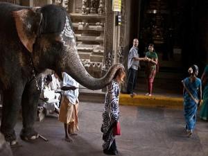 A Tour The Meenakshi Temple Madurai 000483 Pg