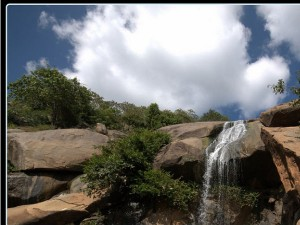Yelagiri Attractions That You Can T Miss 000546 Pg