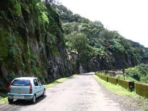 Pune Kaas Plateau Trail Wildflowers Winding Roads