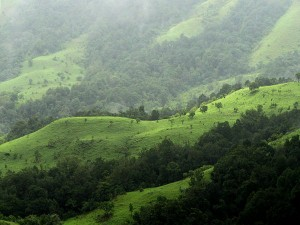 Top Monsoon Destinations Karnataka