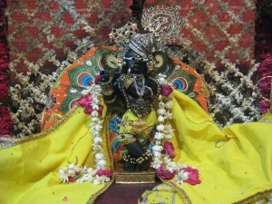 Celebrate Krishna Janmashtami Vrindavan